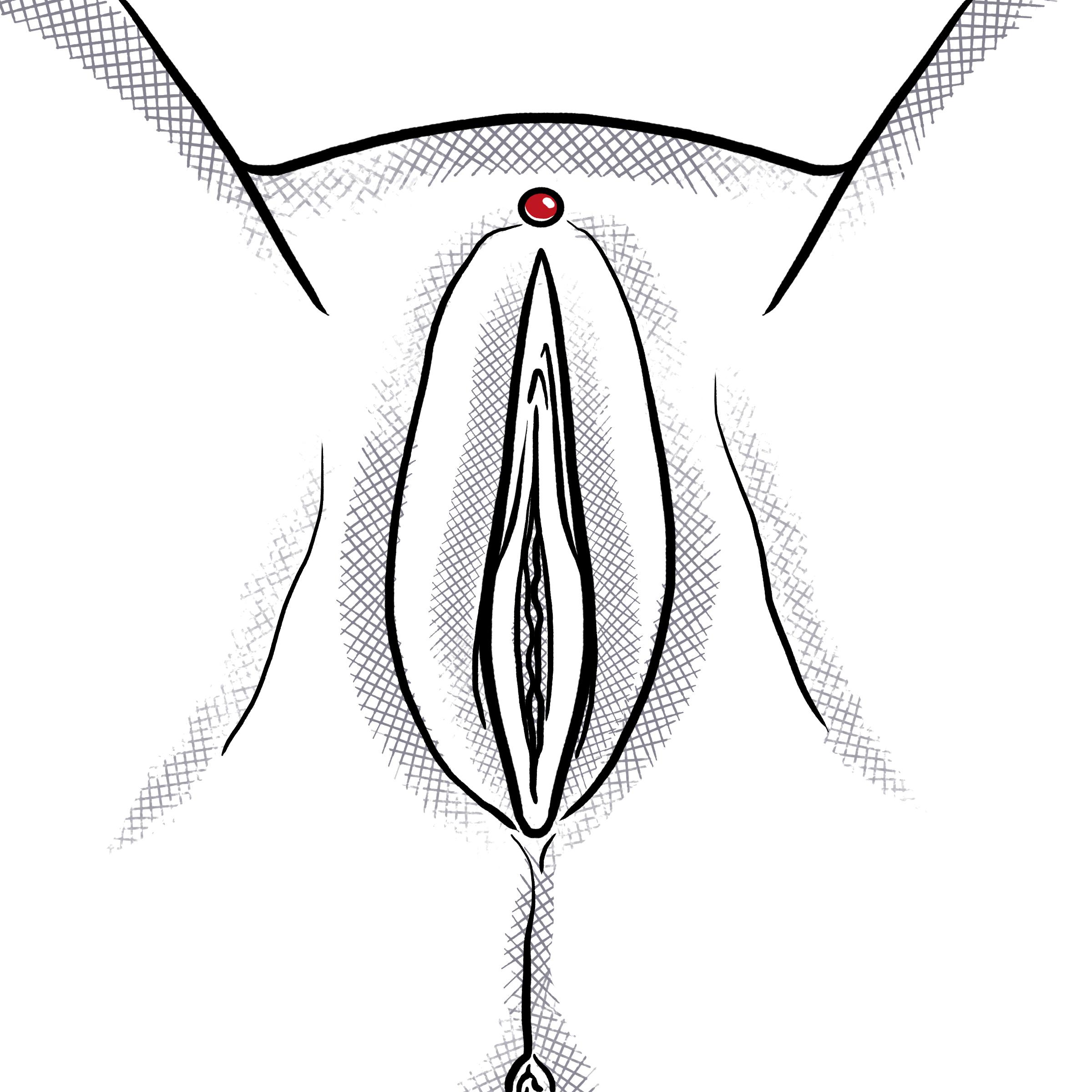 Frau piercing im intimbereich ᐅ Schamlippenpiercing